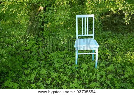 Chair In Garden