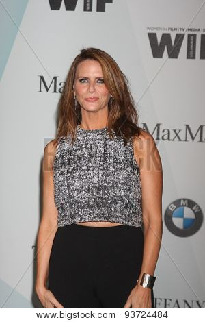 LOS ANGELES - JUN 16:  Amy Landecker at the Women In Film 2015 Crystal + Lucy Awards at the Century Plaza Hotel on June 16, 2015 in Century City, CA
