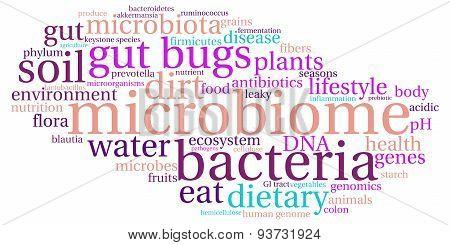 Microbiome Word Cloud
