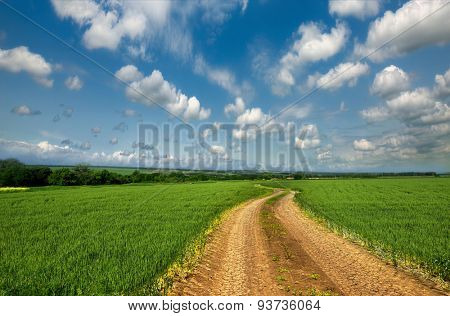Dirt road through the fields.