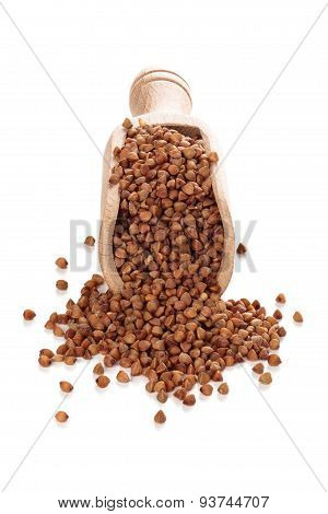 Buckwheat In Scoop.