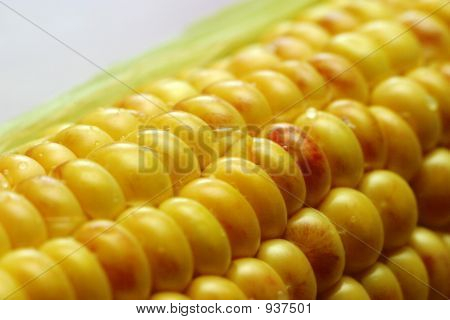 Wet Corn