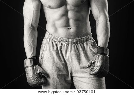 Boxer. Black and white stock photography.