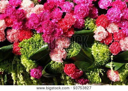 Background Of Red And Pink Carnations