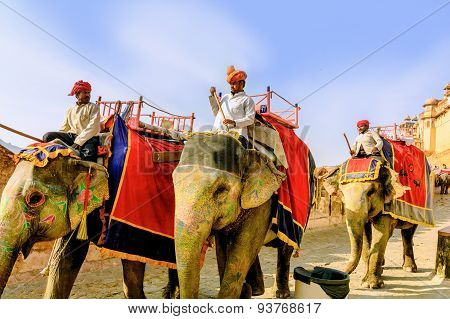 Jaipur, Rajasthan/ India -march 12, 2015: Decorated Elephant Carry Driver In Amber Fort