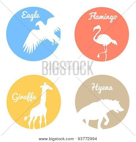 Color animals silhouettes labels in colorful circles. Wild animal logotype or alphabet isolated on w
