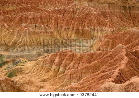 Closeup Of Sand Formation And Bushes In Tatacoa Desert
