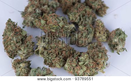 TUCSON, AZ-JUNE 15: Medicinal Marijuana Hybrid Blue Widow June 15, 2015 in Tucson, Arizona