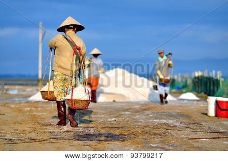 Women workers are collecting salt from the extracting fields to the storage house