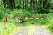 stock photo of safety barrier  - barrier gate on rural path with forest background usage - JPG