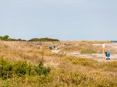 picture of sea oats  - A beach with grass and sea oats dotted with blue trash and recycling cans - JPG