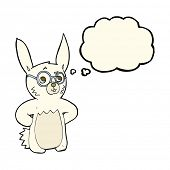 image of spectacles  - cartoon rabbit wearing spectacles with thought bubble - JPG