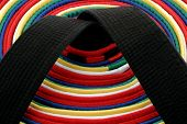 picture of black-belt  - from white belt to black belt circle arrangement - JPG
