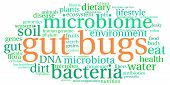 image of water bug  - Gut Bugs word cloud on a white background - JPG