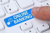 picture of internet-banking  - Internet online banking financial transaction push button paying on computer - JPG