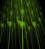pic of cosmic  - green abstract fractal cosmic spiral and lines - JPG