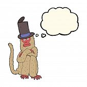 picture of crazy hat  - cartoon monkey wearing hat with thought bubble - JPG