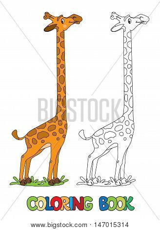 Coloring book of funny giraffe with example. Childrens vector illustration