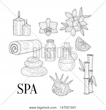 Spa Assosiated Isolated Hand Drawn Realistic Sketches. Artistic Pencil Detailed Contour Illustration On White Background.