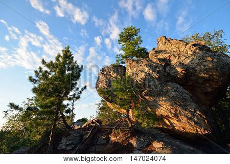 Pine-tree on top of the rock, beautiful cloudy sky at background.