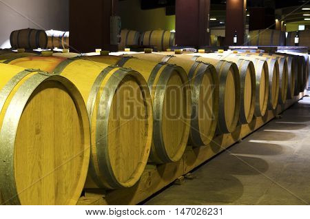 Casks in a winery basement. Wine aging