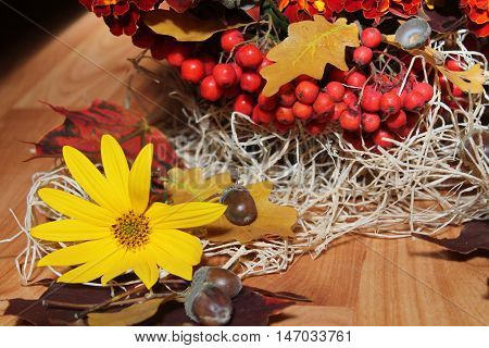 ripe big bright red color juicy rawberries and bloom yellow flower nice things for mood and decoration home in autumn time