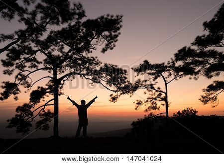 Silhouette of man sperading hand on pine tree with sunset view. Phukradung Thailand.