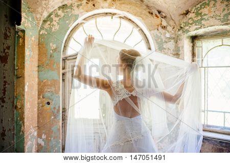 Beautyfull Brides Back.