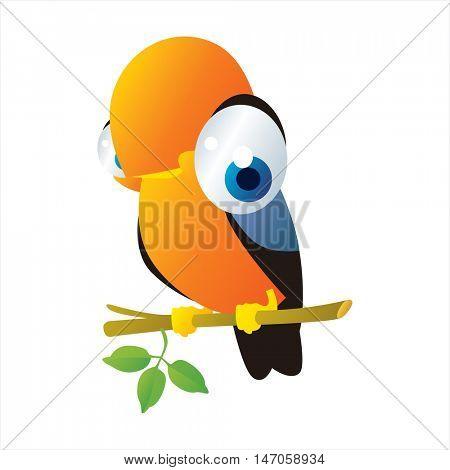 vector cute funny cartoon bird. Rock Cock