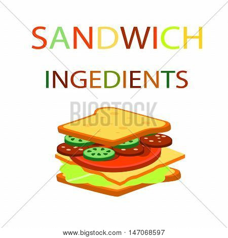 Sandwich and the burger ingredients background.Fast food vector illustration