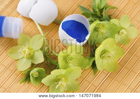 Yellow pad and Easter decoration with egg shells and hellebore plus tempera paint