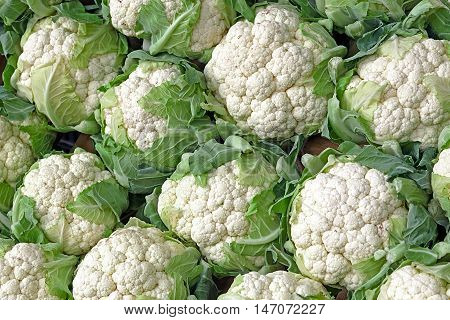 Close up of a large stack of Cauliflower
