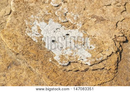 a full frame abstract rocky stone surface