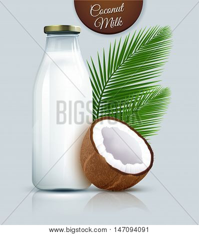 Coconut vegan milk non dairy in bottles. Coconut milk for your design. Vector illustration