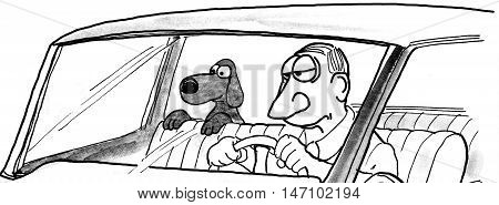 B&W illustration showing man driving a car and a dog eagerly looking over the front seat.