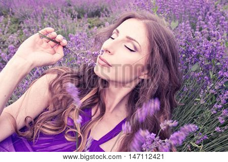 Beautiful Young Woman In Purple Dress Dreaming In A Lavender Field. Blooming Lavender Field.