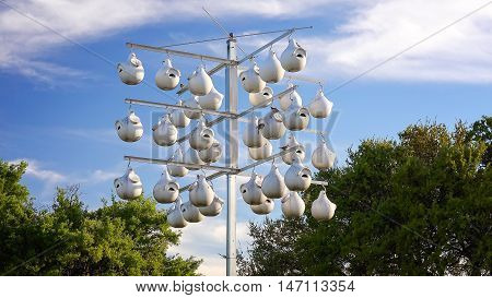 Birds fly to white gourd shapped bird houses hanging on a pole in Texas