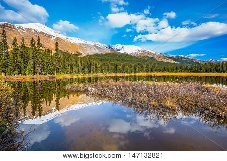 Autumn in Canada. The concept of ecotourism. Clouds are reflected in smooth water. Swamp in the valley of the Rocky Mountains