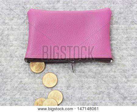 Saving Money Concept, Purse With Coins
