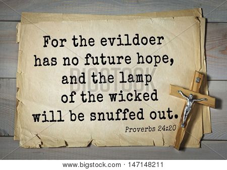 TOP- 100. Bible Verses about Hope.For the evildoer has no future hope, and the lamp of the wicked will be snuffed out.