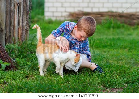Ginger Cat Tenderly Rubs Against The Foot Of A Little Boy
