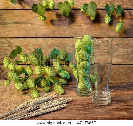empty beer glass on wooden table with green hops in bar or pub still life with wooden background