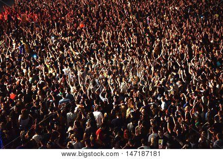 Crowd Having Fun In A Stadium
