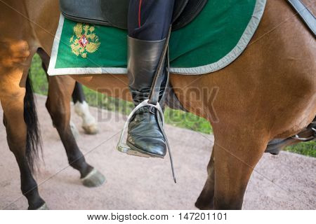 Close up view of the stirrup with policemans boot.