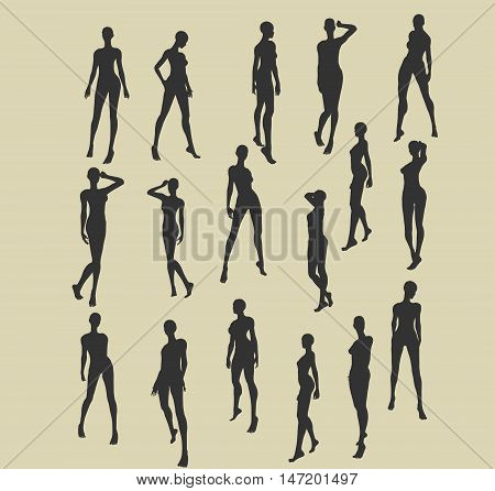 Set of sexy women silhouettes. Fashion mannequin