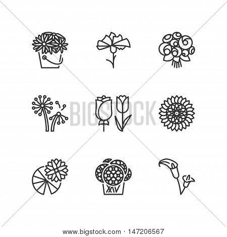 Thin line icons set about flowers. Flat symbols