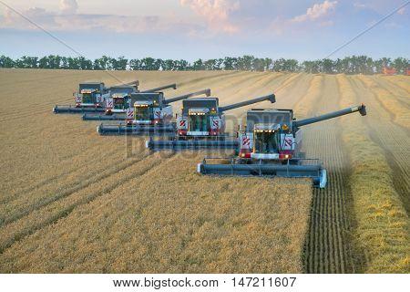 KRASNODAR REGION, RUSSIA - JUL 6, 2015: Five modern harvesters harvest field, In 2015 in Krasnodar region have collected record grain harvest - 102 million tons of grain