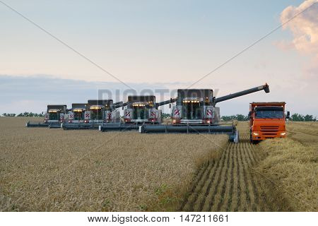 KRASNODAR REGION, RUSSIA - JUL 6, 2015: Modern harvesters and truck harvest field, In 2015 in Krasnodar region have collected record grain harvest - 102 million tons of grain