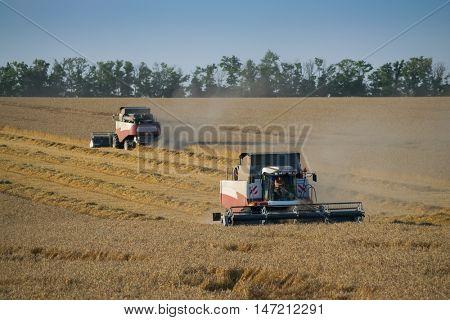 KRASNODAR REGION, RUSSIA - JUL 6, 2015: Two modern harvesters harvest field at evening, In 2015 in Krasnodar region yields reached record level - 58.4 centners per hectare