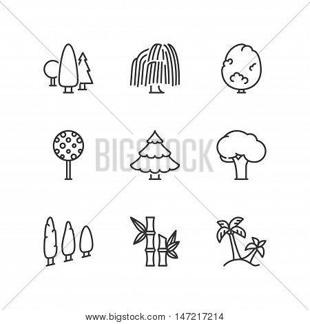 Thin line icons set about trees. Flat symbols